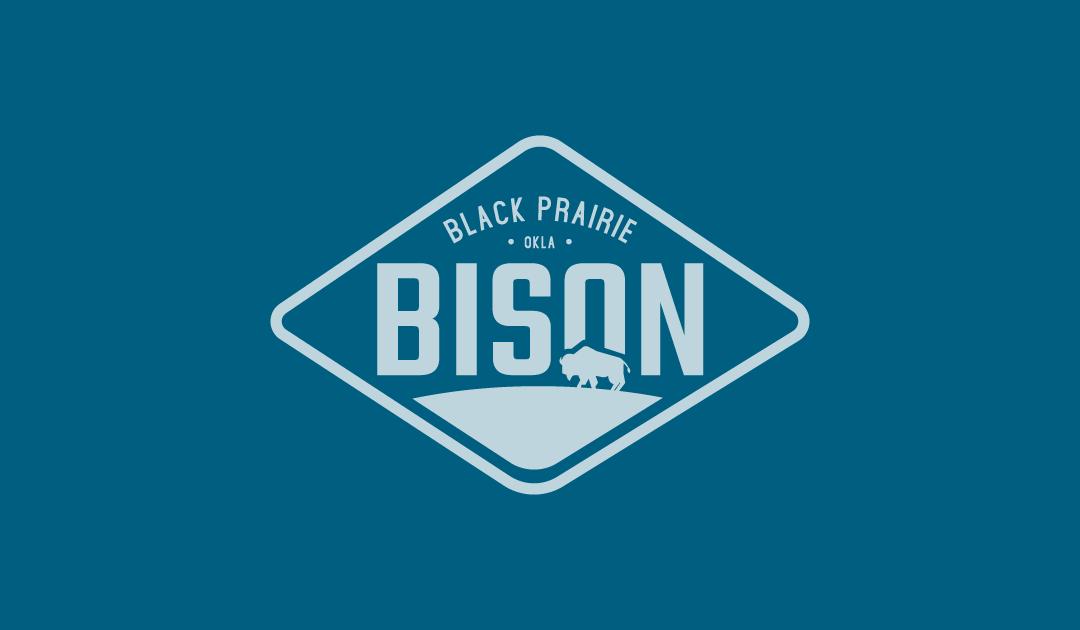 Black Prairie Bison